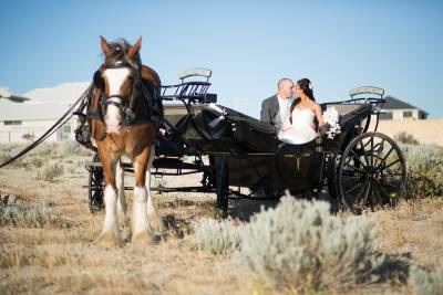 burns beach wedding perth with horse carriage