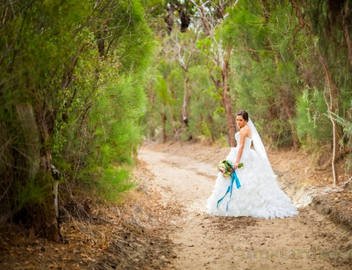 Aleisha and Edward's Wedding at St Mary Peppermint Grove and Frasers Kings Park