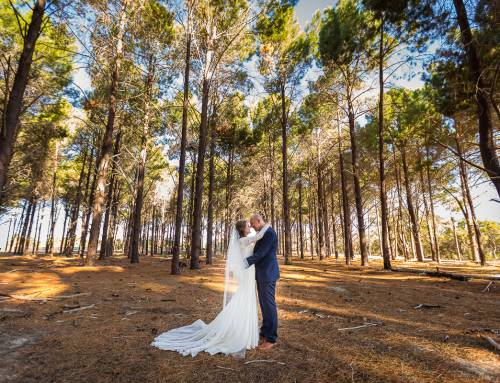 Ally and Mat's Wedding at The Vines and Wanneroo Pine Forest